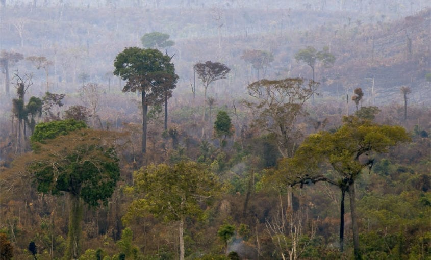 OEstadoAPs DegradacaoFlorestal 11 845x510 - O Estado das Áreas Protegidas: degradação florestal
