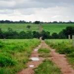 Terra 150x150 - Transparência de órgãos fundiários estaduais na Amazônia Legal