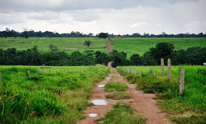Terra 845x510 - Transparência de órgãos fundiários na Amazônia Legal