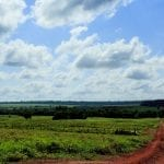 20131212 Imazon RafaelAraujo 00153 150x150 - Chegou a hora de combater o roubo das terras públicas (Nexo Jornal por Brenda Brito)