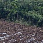 size 960 16 9 desmatamento sumatra 5904 150x150 - Desmatamento aumenta 24% entre agosto de 2018 e março de 2019