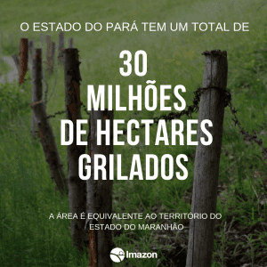 1500 5 1 300x300 - #ImagemDoDia: Você sabe o que é grilagem de terras?