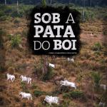 capa sobapatadoboi livro reportagem 150x150 - Sob a Pata do Boi - Como a Amazônia vira pasto