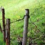 imagemdodiajeferson 150x150 - #ImagemDoDia: Você sabe o que é grilagem de terras?