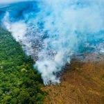 4a10e042 3cac 43c4 9520 a0f38e1e4522 150x150 - #ImagemDoDia - Terras Indígenas são as Áreas Protegidas mais atingidas por degradação florestal na Amazônia Legal