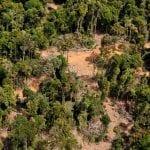 """desmatamentoamaz 150x150 - #ImazonNaMídia: """"Não dá para relaxar e dizer que a recessão vai baixar o desmatamento"""" (O Eco)"""