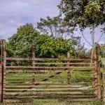 Terras Foto Brenda Brito 150x150 - Nota Técnica sobre o Projeto de Lei Estadual nº 129/2019 que altera as regras para regularização fundiária no Pará
