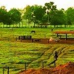 ITR Imazon 2019 150x150 - Municípios Amazônicos poderiam arrecadar até 6 vezes mais impostos sobre  propriedades rurais