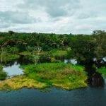 DJI 0054 150x150 - Debatendo o Plano Estadual Amazônia Agora na visão da Sociedade Civil e Academia