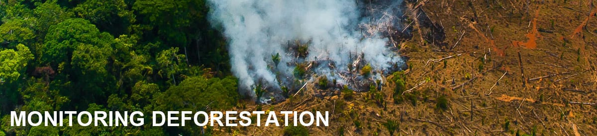Monitoring Deforestation - Who we are