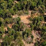 desmatamentoamaz 150x150 - #ImazonInTheMedia: Study: Deforestation in Brazil's Amazon jumped by 80 pct. in September (EFE)