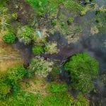 DJI 0033 150x150 - Índices de ameaça e pressão de desmatamento em áreas protegidas na Amazônia aumentam 39% em um ano, mostra Imazon