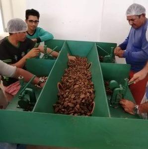 WhatsApp Image 2019 08 28 at 09.37.34 1 e1570539353136 298x300 - Recurso de concessão florestal gera desenvolvimento para o município de Terra Santa (PA) (Serviço Florestal Brasileiro)