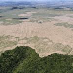 Felipe Werneck Ibama 150x150 - #ImazonNaMídia: Desmatamento na Amazônia aumentou 80% em setembro, diz Imazon (O Eco)