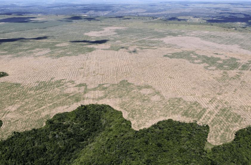 Felipe Werneck Ibama - #ImazonNaMídia: Aumento de 216% do desmatamento na Amazônia é destaque nacional