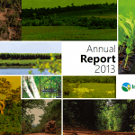 AnnualReport2013 150x150 - Annual Report 2013