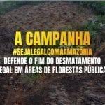 2 Twitter 150x150 - #ImazonNoMídia: Vídeos mostram como funciona o roubo de terras públicas na Amazônia  (Globo Rural)