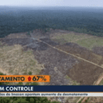 SAD JL1 150x150 - #ImazonNaMídia: Imazon aponta aumento de quase 70% no desmatamento na Amazônia (TV Liberal)