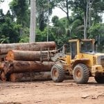 AdobeStock 308457609 scaled 1 150x150 - Abril registra recorde de desmatamento na Amazônia nos últimos dez anos, mostra sistema de monitoramento do Imazon