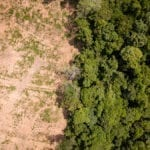 Desmatamento adobestock 150x150 - Ameaça e Pressão de Desmatamento em Áreas Protegidas: SAD de Fevereiro a Abril de 2020
