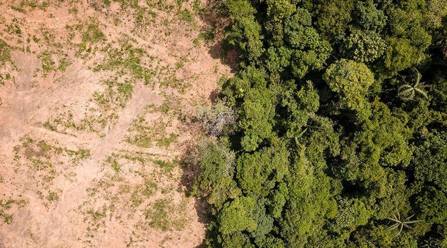 Desmatamento adobestock 900x500 - Ameaça e Pressão de Desmatamento em Áreas Protegidas: SAD de Fevereiro a Abril de 2020