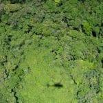 113188983 e1c6be55 9585 4d1f 8c29 12a0b3eab1c9 150x150 - #ImazonNaMídia: Brasil entrará em temporada de queimadas sem plano para a Amazônia (BBC Brasil)