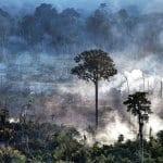 1592393446144 150x150 - #ImazonNaMídia: Bacia do Xingu tem alta no desmatamento e ONGs cobram ação do MP e do governo do PA (Estadão)