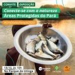 WhatsApp Image 2020 10 13 at 08.24.11 150x150 - Conexão com a natureza é tema de exposição fotográfica no Parque Do Utinga