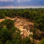 AdobeStock 287236745 150x150 - Desmatamento na Amazônia aumenta 23% em novembro e bate recorde mensal dos últimos dez anos