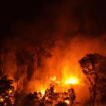 2 150x150 - IPCC: Pesquisador do Imazon comenta relatório da ONU sobre mudanças climáticas