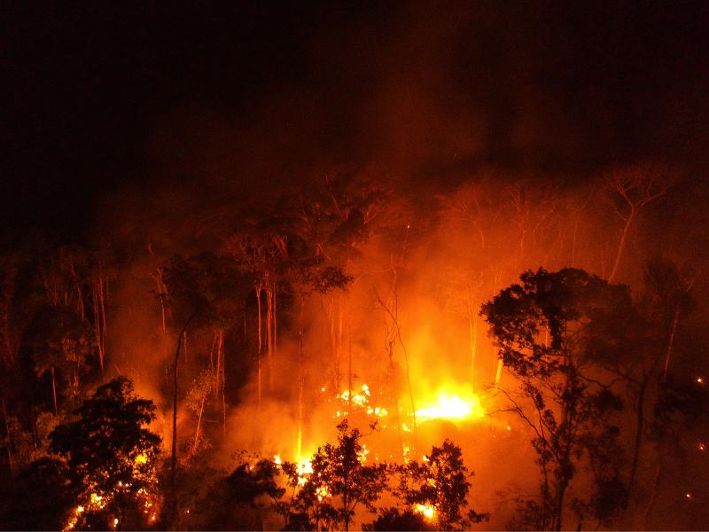 2 - IPCC: Pesquisador do Imazon comenta relatório da ONU sobre mudanças climáticas