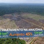 JN SAD abril21 150x150 - #ImazonNaMídia: Maior desmatamento em abril dos últimos 10 anos estampa manchetes de veículos regionais e nacionais