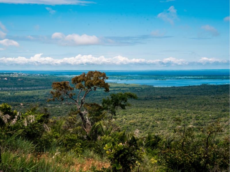 site - Instituições ambientais lançam o Portal Proteja, biblioteca virtual sobre áreas protegidas do Brasil
