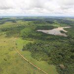 up ag 27879 f9b86f3e 31d6 d116 e315 dc787a17677d 150x150 - Desmatamento na Amazônia foi o maior em 10 anos pelo terceiro mês consecutivo, divulga Imazon