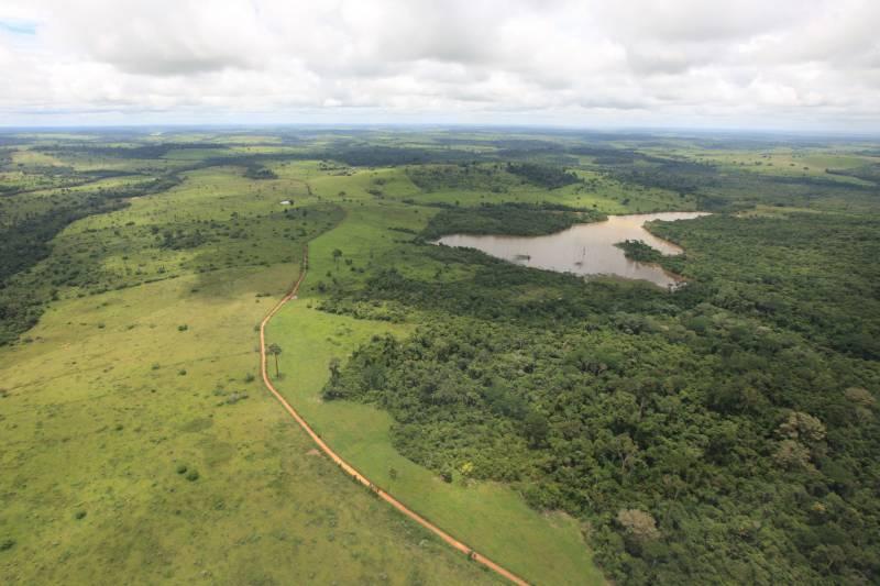 up ag 27879 f9b86f3e 31d6 d116 e315 dc787a17677d - Desmatamento na Amazônia foi o maior em 10 anos pelo terceiro mês consecutivo, divulga Imazon