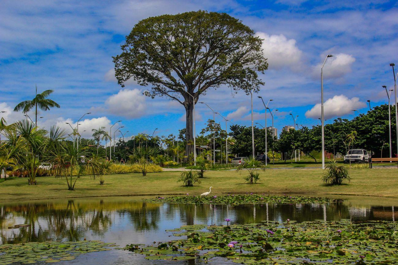 """8643 1c84de7a 4c78 ef8e 1167 aafc770a3d3d - Confira a programação completa da campanha """"Um Dia no Parque"""" nas áreas protegidas do Pará"""
