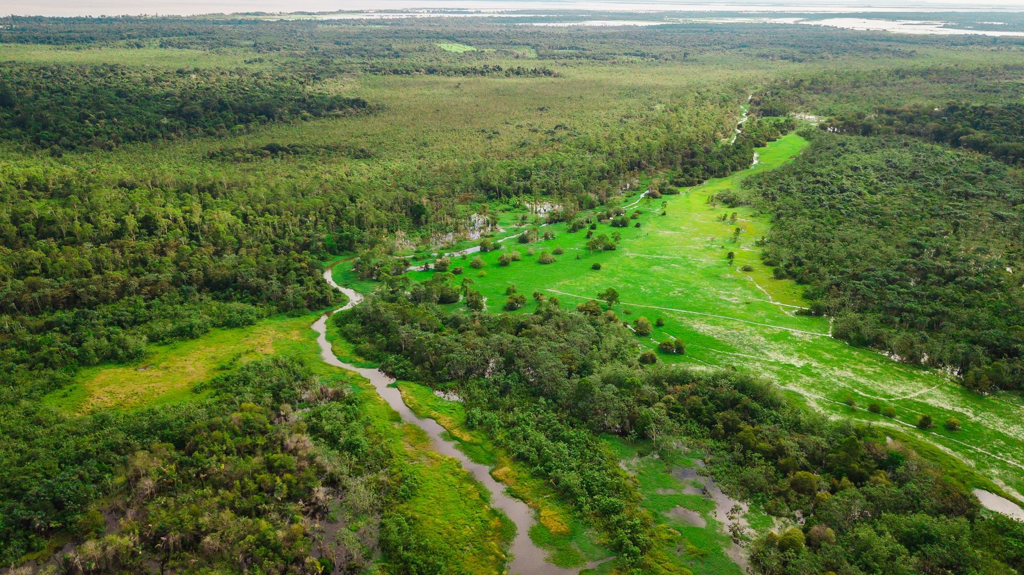 """Area de Protecao Ambiental Jara em Juruti Credito Marcio Nagano - Confira a programação completa da campanha """"Um Dia no Parque"""" nas áreas protegidas do Pará"""