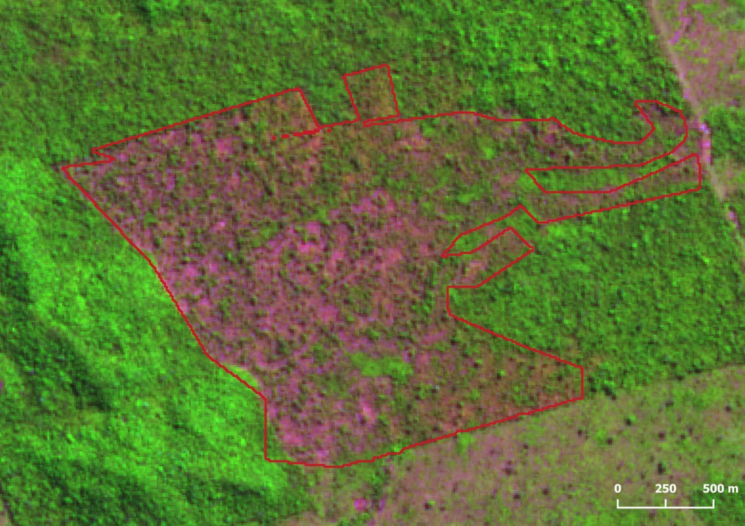 Desmatamento Altamira Julho2021 1 - Deforestation in the Brazilian Amazon reached 2,095 km² in July, and the last 12 months cumulative is the highest in 10 years