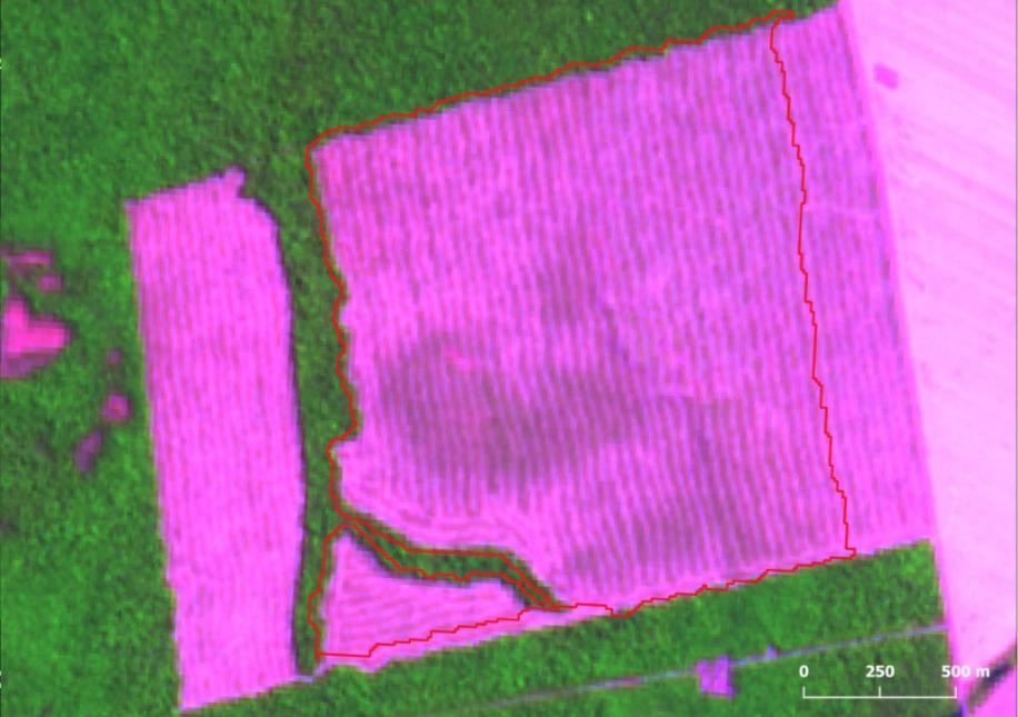 Desmatamento de 265 km² no municipio Confresa MT - Desmatamento na Amazônia chega a 1.606 km² em agosto, maior área da década no mês