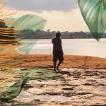 Lambes Imazon Destaque 150x150 - Dia da Amazônia: Imazon lança série de lambes com imagens e ilustrações do bioma